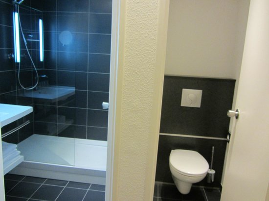 Mercure Tours Nord: Bathroom and toilet