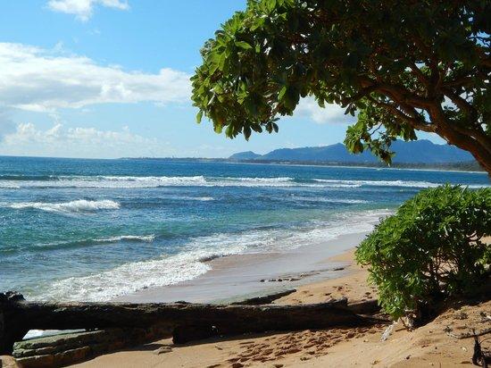 Kauai Coast Resort at the Beachboy: Gorgeous beach view