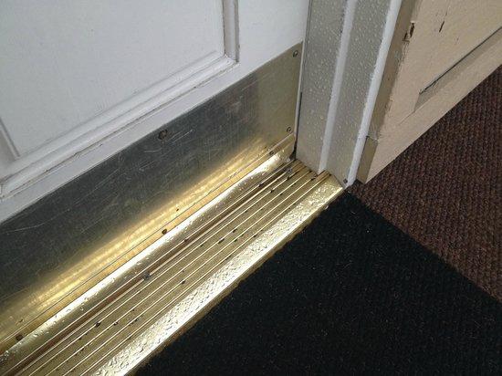 The Lodge at Tiburon: Wet carpet outside door
