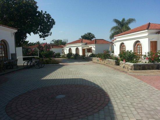 eó Suite Hotel Jardin Dorado: Hotel Grounds 4