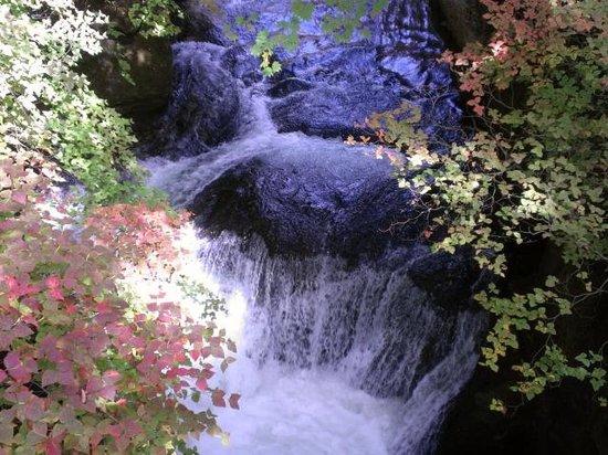 Ryuzu Waterfall: 滝