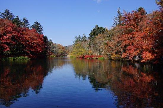 كارويزاوا ماشي, اليابان: 紅葉の雲場池