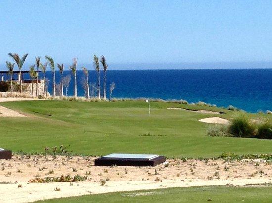 Puerto Los Cabos Golf Club: #3