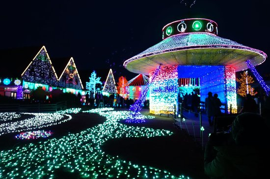 Sodegaura, Japan: 東京ドイツ村  イルミネーション