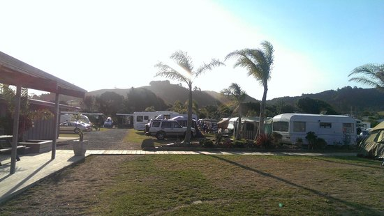Beachaven Kiwi Holiday Park: camping site