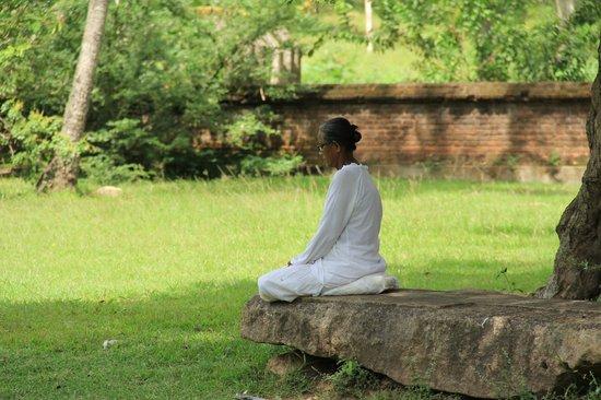 Isurumuniya Temple: Отличное место для медитаций