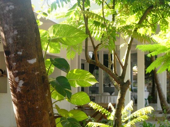 Hotel Whiteroyal: Surrounding