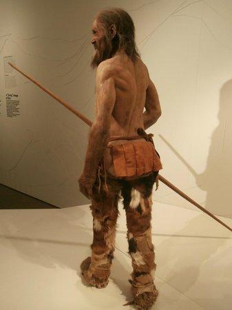 Südtiroler Archäologiemuseum : Uomo del Similaun: si notano sulla schiena i tatuaggi
