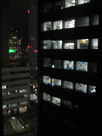 Hotel Sunroute Plaza Shinjuku: view from our room (11st floor)