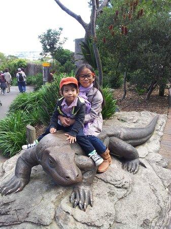 Taronga Zoo: 2
