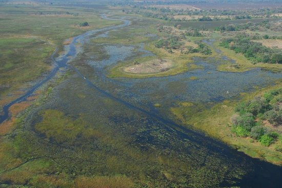 Okavango Delta: Luftaufnahme