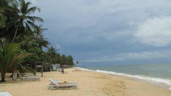 Sea Star Resort Phu Quoc: это пляж
