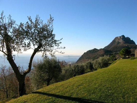 Lefay Resort & Spa Lago di Garda : Giardino