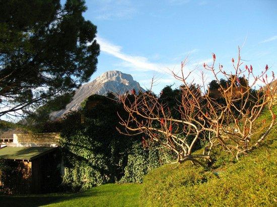 Lefay Resort & Spa Lago di Garda: Giardino-rustiphinia