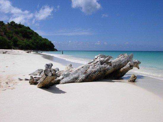 Cocobay Resort : spiaggia vicina