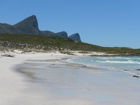 Cape Splendour Day Tours: Beautiful empty beach on the way to the Cape