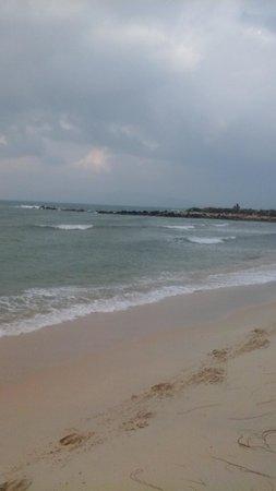 Mimosa Resort & Spa: the beach