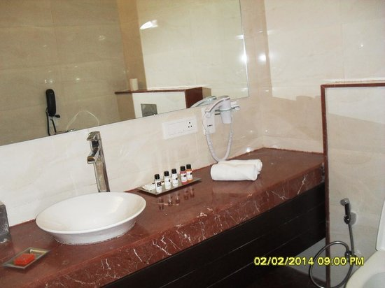Humble Hotels Amritsar: Bathroom