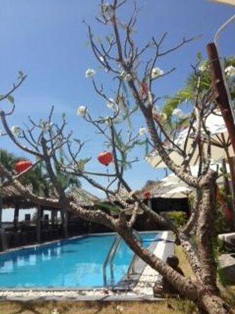 Mui Ne Hills Budget Hotel: what a spot