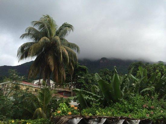 Lemongrass Lodge: вид с балкона (белые это облака из которых льет дождь)