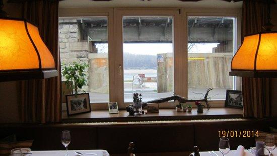 Gasthof Zum Goldenen Anker: В окно виден Дунай и летняя площадка