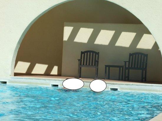 Cortijo el Sotillo: piscina