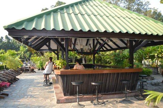 Garden Lodge: Бар