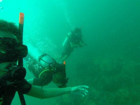 Super Divers: My classmates n I,