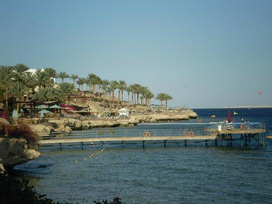 Grand Rotana Resort & Spa: Береговая линия большая места хватает всем