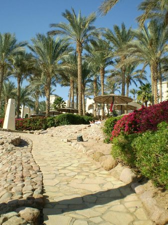 Grand Rotana Resort & Spa: Территория супер