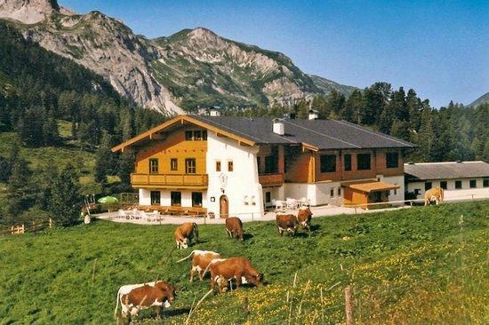 Weningeralm Hotel Pension: Sommer