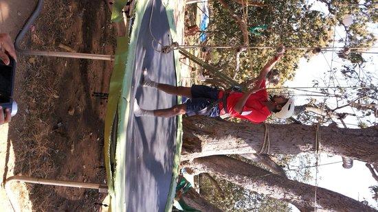 Mango Mist Resorts : activities