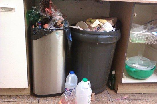 Paddy's Palace Belfast : Overflowing bins