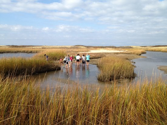 Afternoon spent at Andy's Way, Great Salt Pond, Block Island