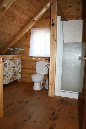 L'Aventurier Du Gouin: Salle bain haut