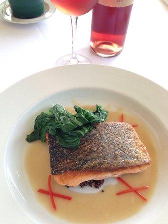Vox: salmon