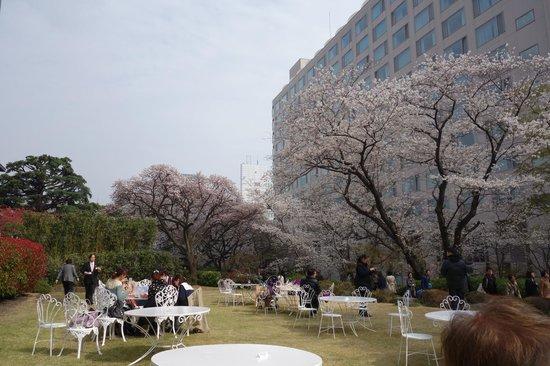 Grand Prince Hotel Takanawa: 桜祭り
