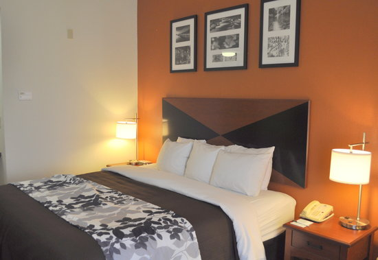Sleep Inn & Suites Palatka: King Deluxe Room