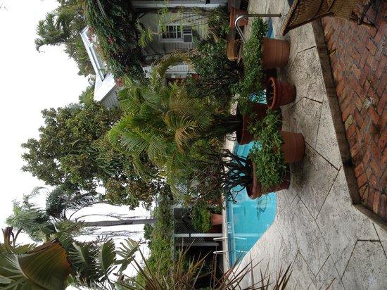 Heron House: La piscine