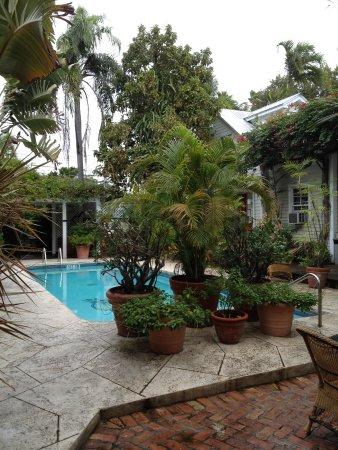 Heron House : La piscine
