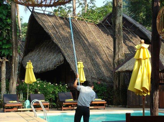 Banpu Koh Chang Resort: piscine