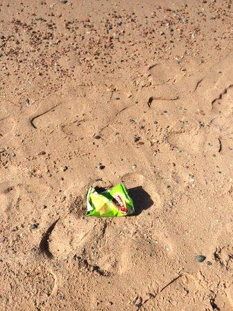 InterContinental Aqaba Resort: Trash on the beach