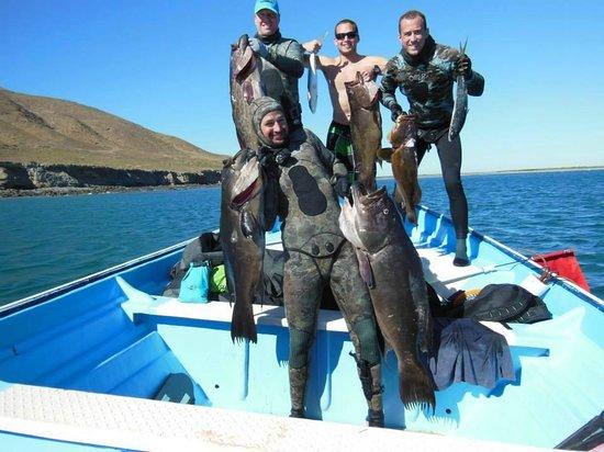 Palapas Ventana : Group with Grouper