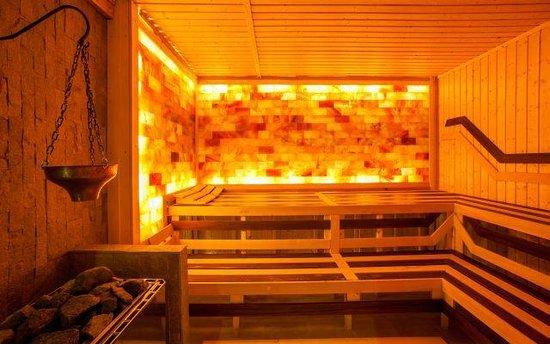 Royal Spa Hotel: Himalayan sauna