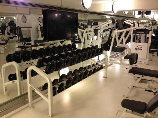 Mercure Istanbul City Bosphorus Hotel: Gym 6