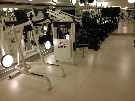 Mercure Istanbul City Bosphorus Hotel: Gym 3