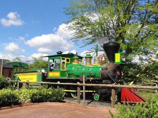 Walt Disney World: All aboard!