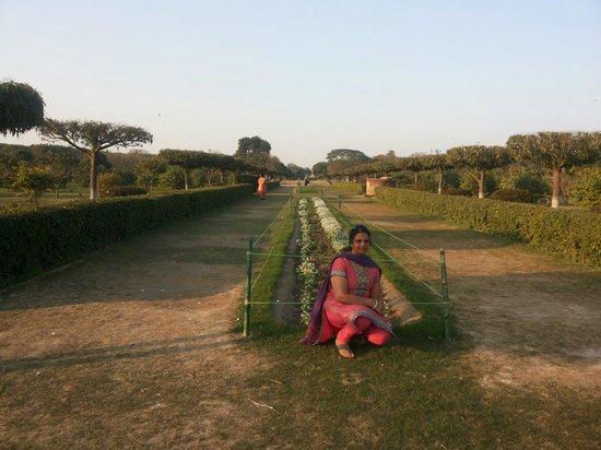 Mehtab Bagh : Garden view