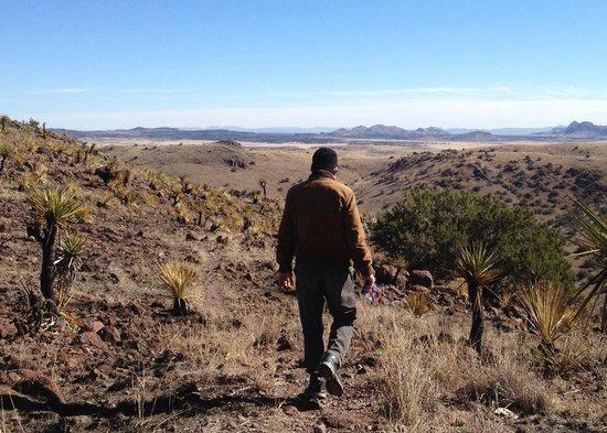 Indian Lodge: hiking in davis mountains, fort davis TX