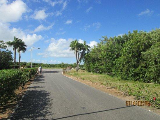 Gran Caribe Club Villa Cojimar : A la sortie de l'hotel